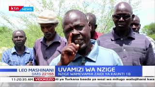 Waakazi wa Elgeyo Marakwet wanaishi na hofu baada ya nzige kuvamie na kuharibu mimea yao
