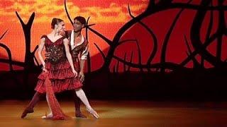 Don Quixote - Act II pas de deux (The Royal Ballet)