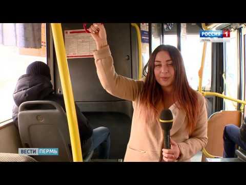 Льготный проезд: Власти пошли навстречу студентам