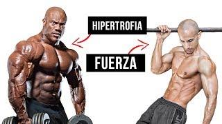 GANAR MÚSCULO vs GANAR FUERZA   Aprende a diferenciar tu forma de entrenar