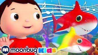 Rainbow Color BABY SHARK Song! | Little Baby Bum: Nursery Rhymes & Baby Songs | ABCs 123s | Moonbug