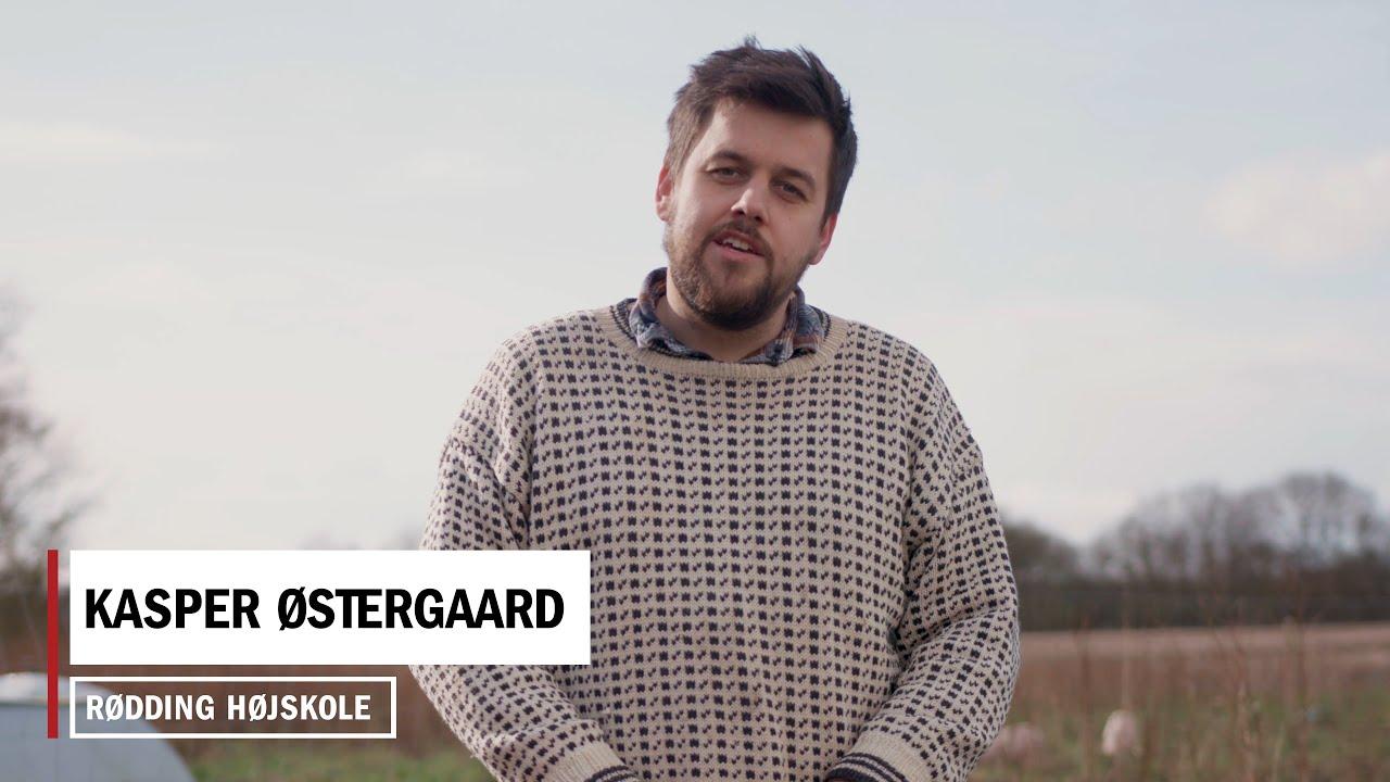HØJSKOLE HACK: Lav din egen røgovn af en flyttekasse