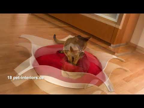 Exklusive Katzenkörbe und Katzenbetten von pet-interiors.de