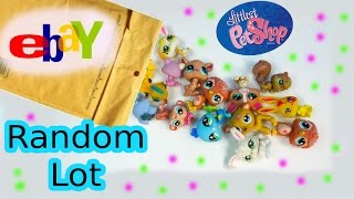 LPS 5 Random Bobbleheads EBAY Littlest Pet Shop Lot Mystery Surprise Pets Haul Review Unboxing