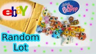 LPS 5 Random Bobbleheads EBAY Littlest Pet Shop Lot Mystery Surprise Pets Haul Review Unboxing
