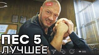 Сериал ПЕС - 5 сезон - 1, 2, 3 серия - ВСЕ СЕРИИ смотреть онлайн | ЛУЧШИЕ МОМЕНТЫ