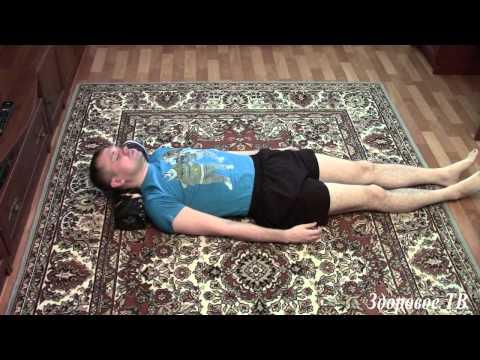 Комплекс упражнений для сколиоза