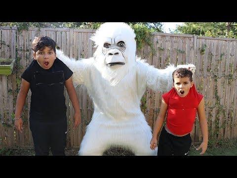 Johny Johny Yes Papa Nursery Rhymes Song , les boys tv