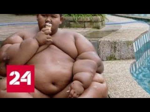 Глобальное ожирение: парниковые газы разжигают аппетит - Россия 24