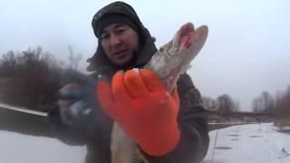 Первый лед на реке, выехали за налимом а поймали щуку !!! Во дела !!!