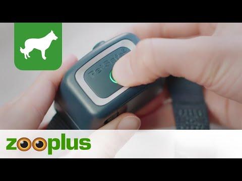 Erziehungshalsband | PetSafe® Spray Anti-Bell-Halsband | zooplus.de