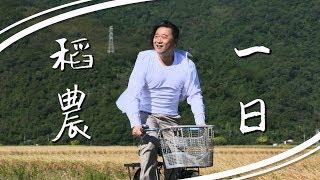 《一日系列第四十七集》邰邰泱泱帶你認識稻米的一生-一日稻農