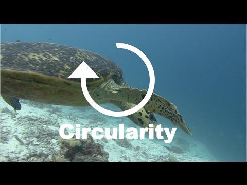 Better & Faster 3/7 – CYCLICALITY (Trends Keynote Speaker Jeremy Gutsche)