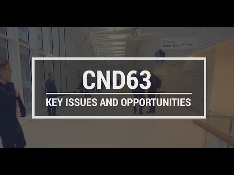 CND 63: Key issues and opportunities