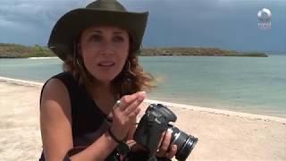 Detrás de un click - Guerrero Negro: Baja California Sur
