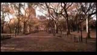 Def Leppard - Torn to Shreds Español