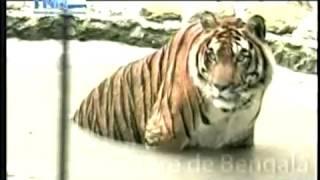 En mi Hogar Zoologico Rossy Walther 05 04 2013