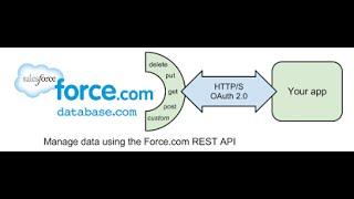 Salesforce REST API  Integration
