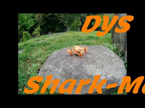 dys Shark-Mako PARKFLIGHT