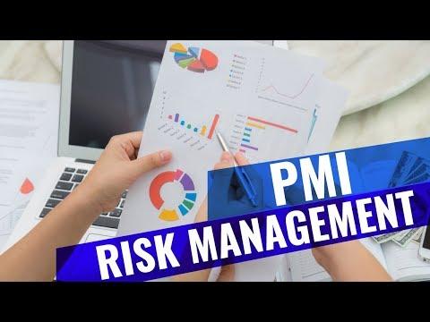 PMI Risk Management Professional PMI RMP® Exam Preparation ...