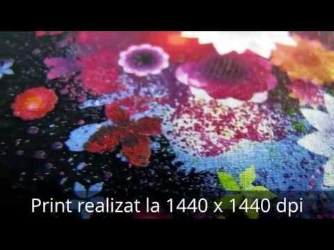 Imprimanta DTG pentru tricouri negre