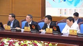 Tin Tức 24h: Chính thức thanh tra vụ phá rừng nuôi bò ở Phú Yên