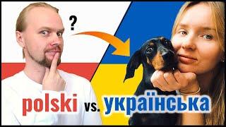 Polish Ukrainian Mutually Intelligible?   Animals   Slavic Languages Comparison