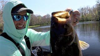 2020 Bassmaster Elite at St. Johns River (TV)