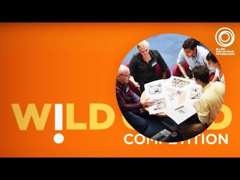 <p><strong>Schmidt MacArthur Fellowship Wildcard</strong> </p>