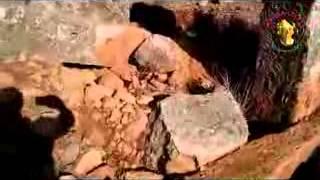 preview picture of video 'The Limestone Massif: illicit diggings at Deir Turmanin المدن المنسية : حفريات سرية في دير ترمانين'