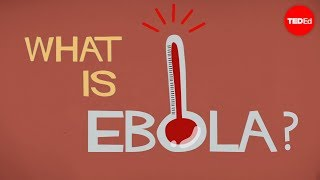 TED-Ed - Ebola - What We Know (and Don't Know)