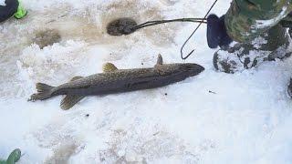 Рыбалка в лен обл зимой