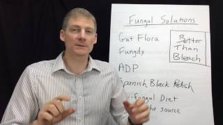 Better Than Bleach!  Kill Mold/Yeast in Your Body in 3 Simple Phases.