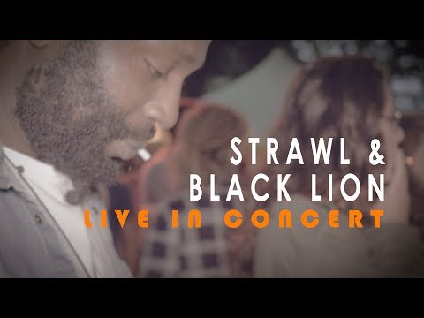 Strawl & Black Lion - Battlefield [Valkhof Festival 2017]...