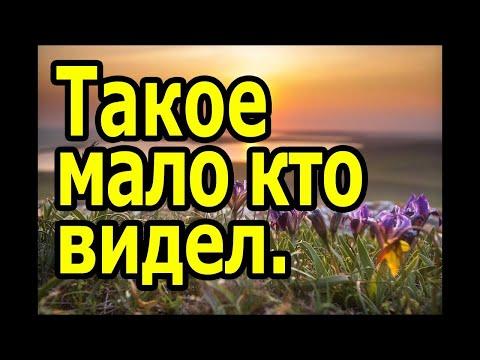 Малоизвестные места Крыма, обязательные к посещению