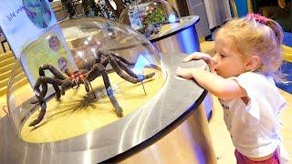 Детский музей науки Развлечения для детей Children's Museum Kids Pretend Play