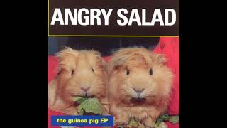 Angry Salad - Did I Hurt You?