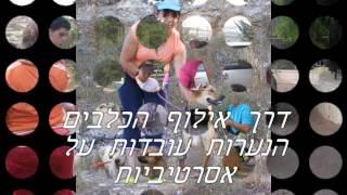 טיפול בעזרת כלבים - טיפול בעזרת בעלי חיים - פרוייקט העצמה לנערות