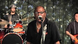Joe Louis Walker - One Time Around