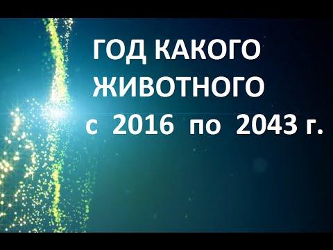 Гороскоп овна кабана на 2016