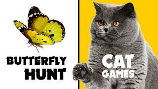 CAT GAMES ★ BUTTERFLY HUNT on screen