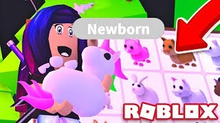 All The Pets In Adopt Me Roblox Game | StrucidCodes.com