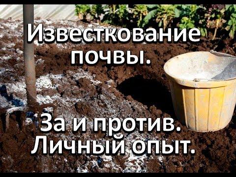 Известкование почвы. Личный опыт.