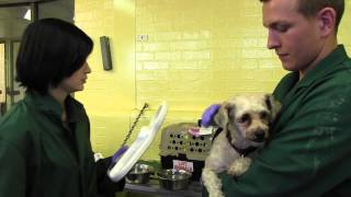 Heathrow Animal Reception Centre