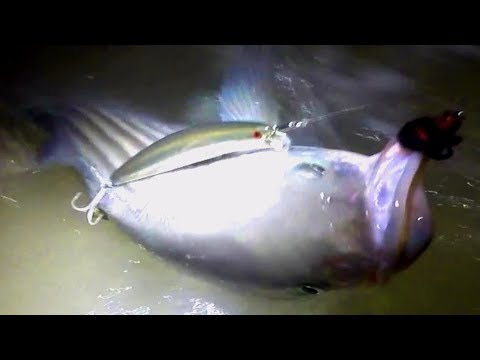 La pesca su una pertica su un tessitore