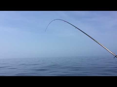 Cheburashkas Di Tula per pescare per comprare