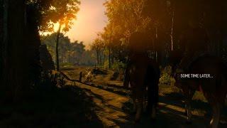 [PC] The Witcher 3: Wild Hunt [R7 250X]