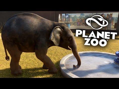 PLANET ZOO Beta - 15 - Flitzende Elefanten Babys :-)   Planet Zoo Deutsch ► Franchise Mode