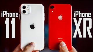 iPhone 11 vs iPhone XR - Full Comparison!