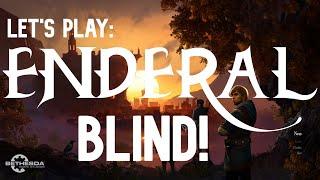 Enderal Blind